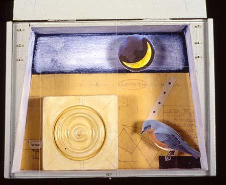 Bluebird Ponders North and Night Sky