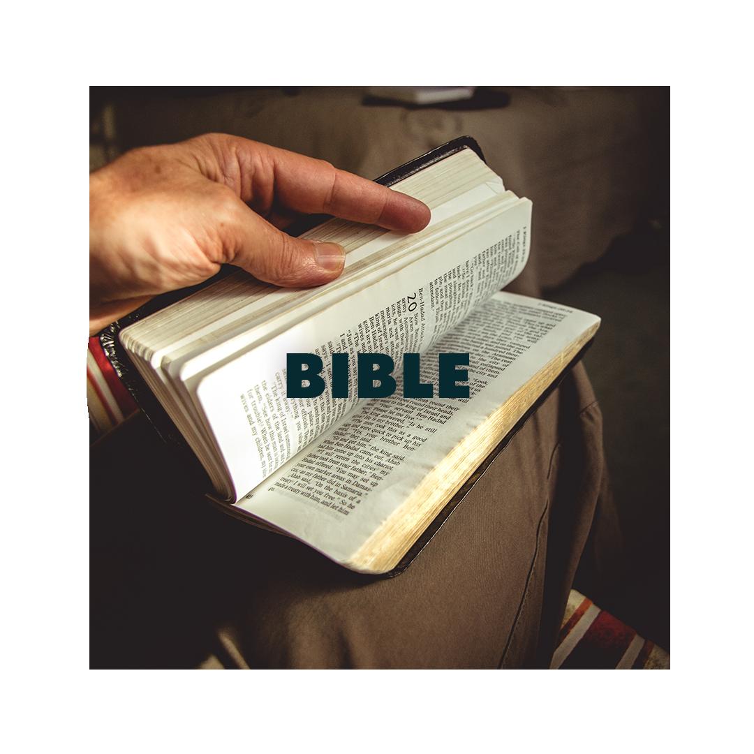 mens-bible2.png