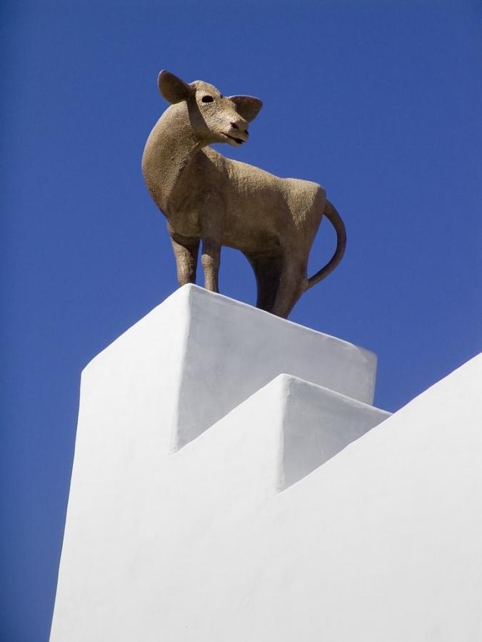 Small-Cow-House_Detail1208.jpg