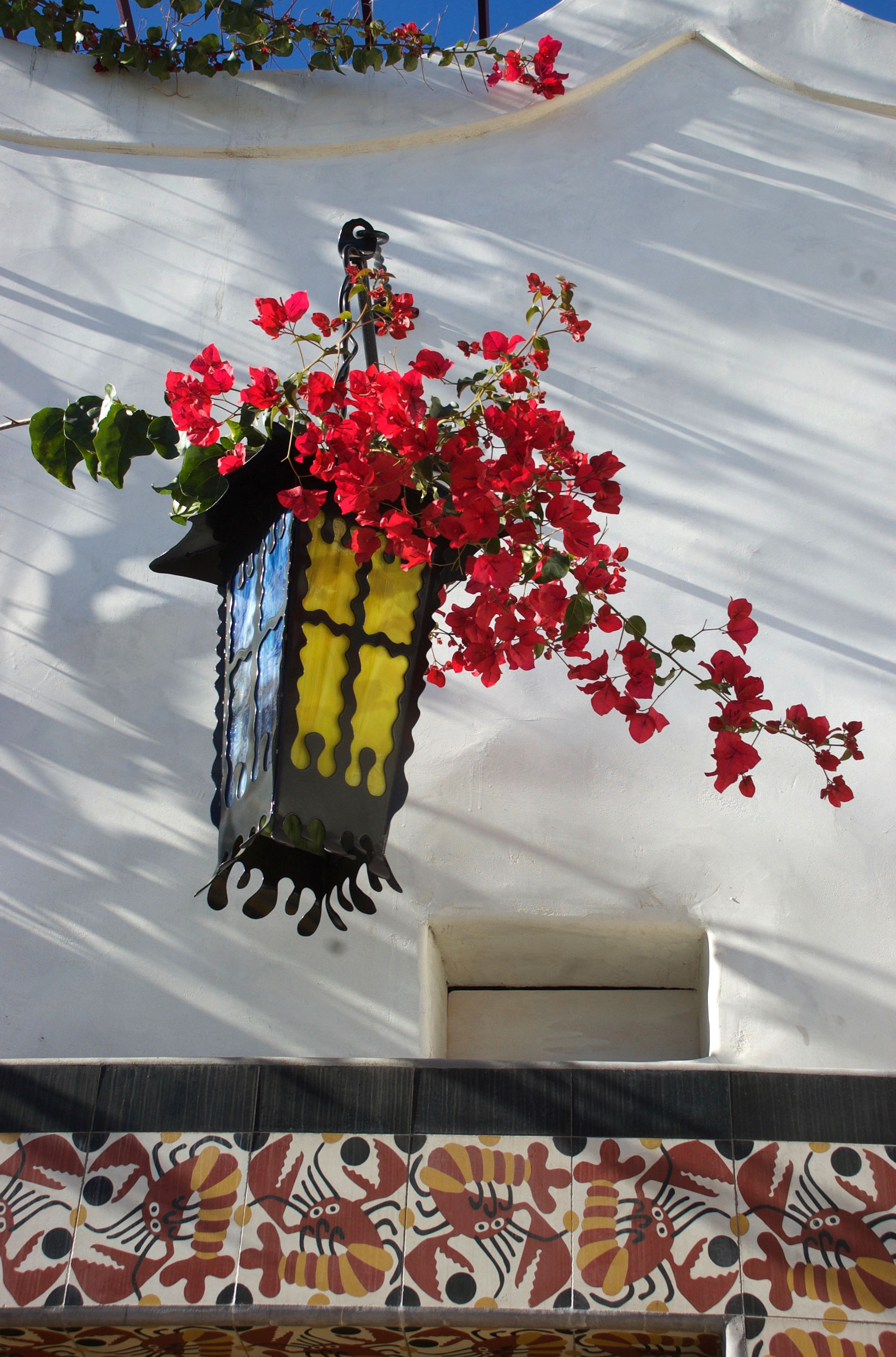 lamp & bougainvillea.jpg