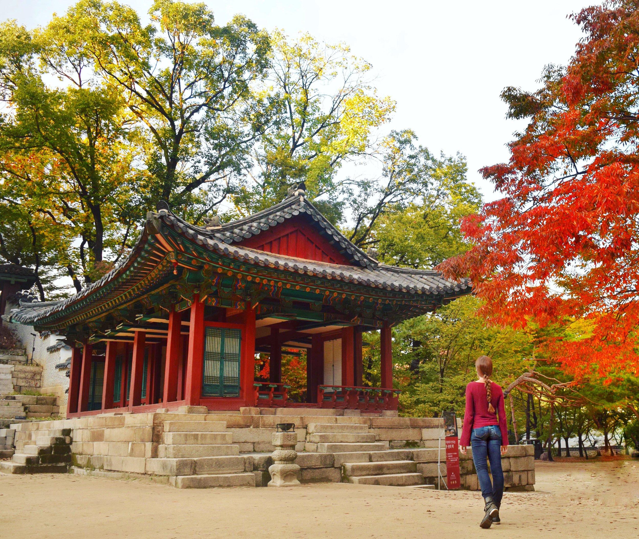 Changdeokgung-secret-garden.JPG