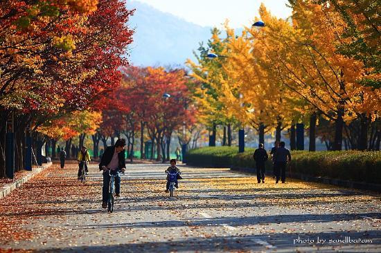 incheon-grand-park.jpg