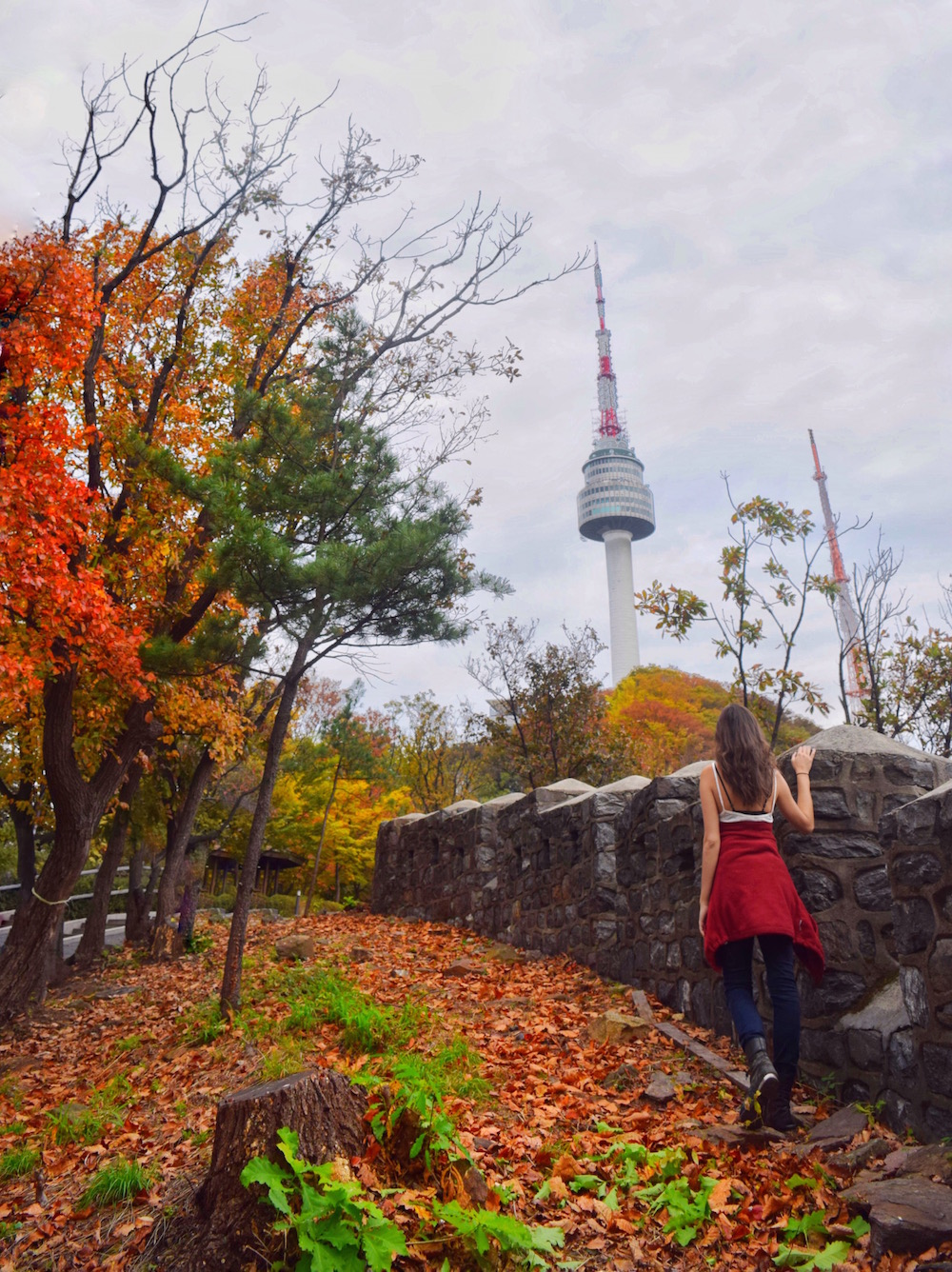 Seoul-Namsan-Fall.JPG