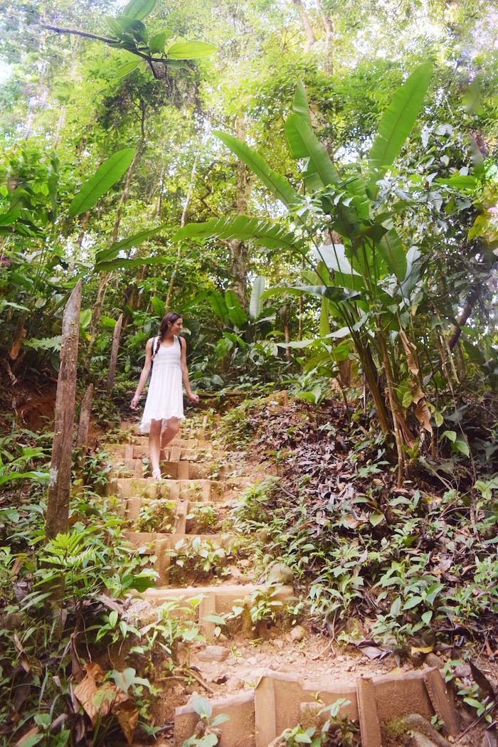 Trail on La Cusinga Eco Lodge Property
