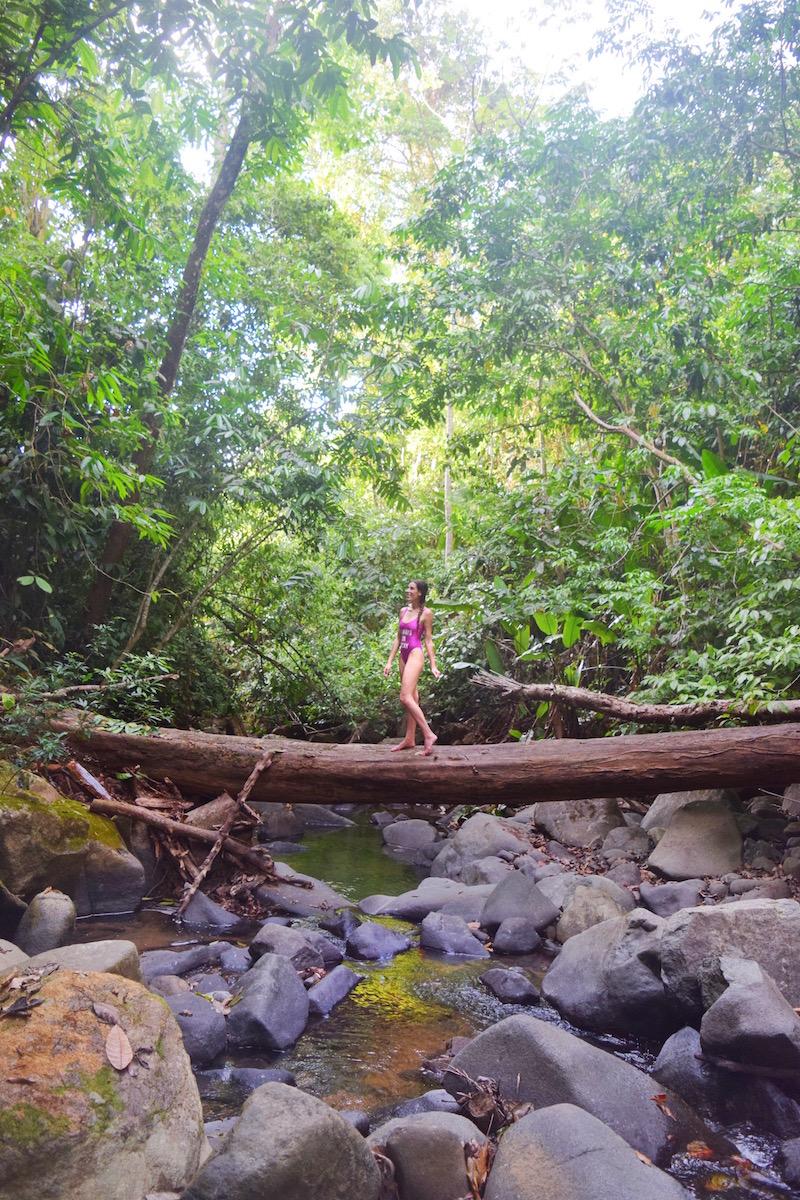 One of the Trails La Cusinga Costa Rica