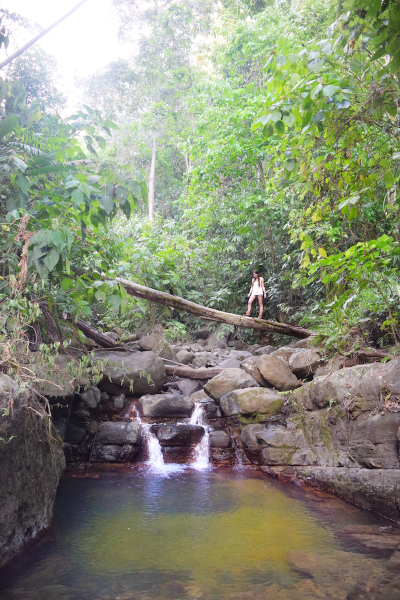 Natural Swimming Hole and Trail at Oxygen Jungle Villas