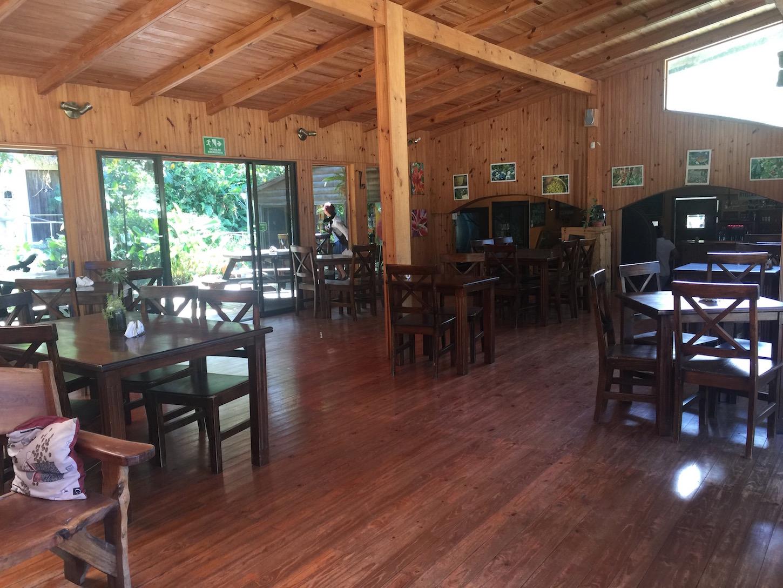 Where to Eat in Monteverde