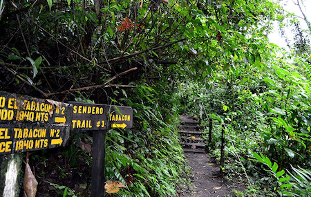 Hiking in Arenal