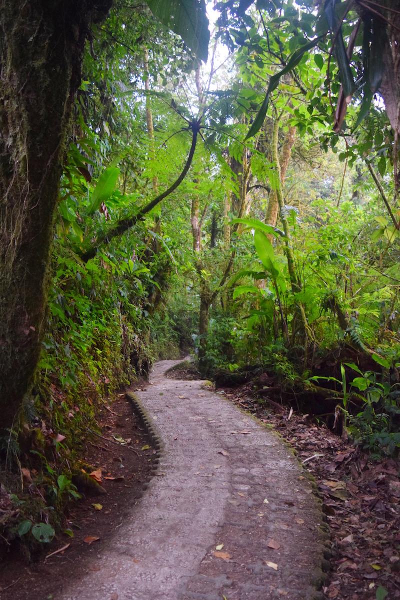 best hiking monteverde