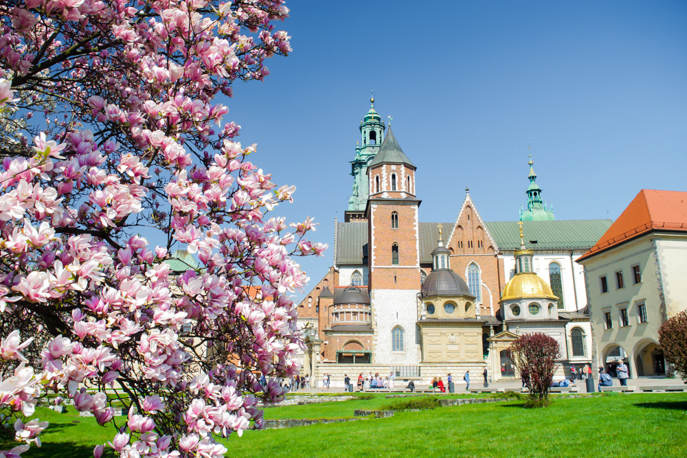 Free walking tour guide for the popular Royal Route in Krakow Poland.  Tessa Juliette www.travelwheretonext.com
