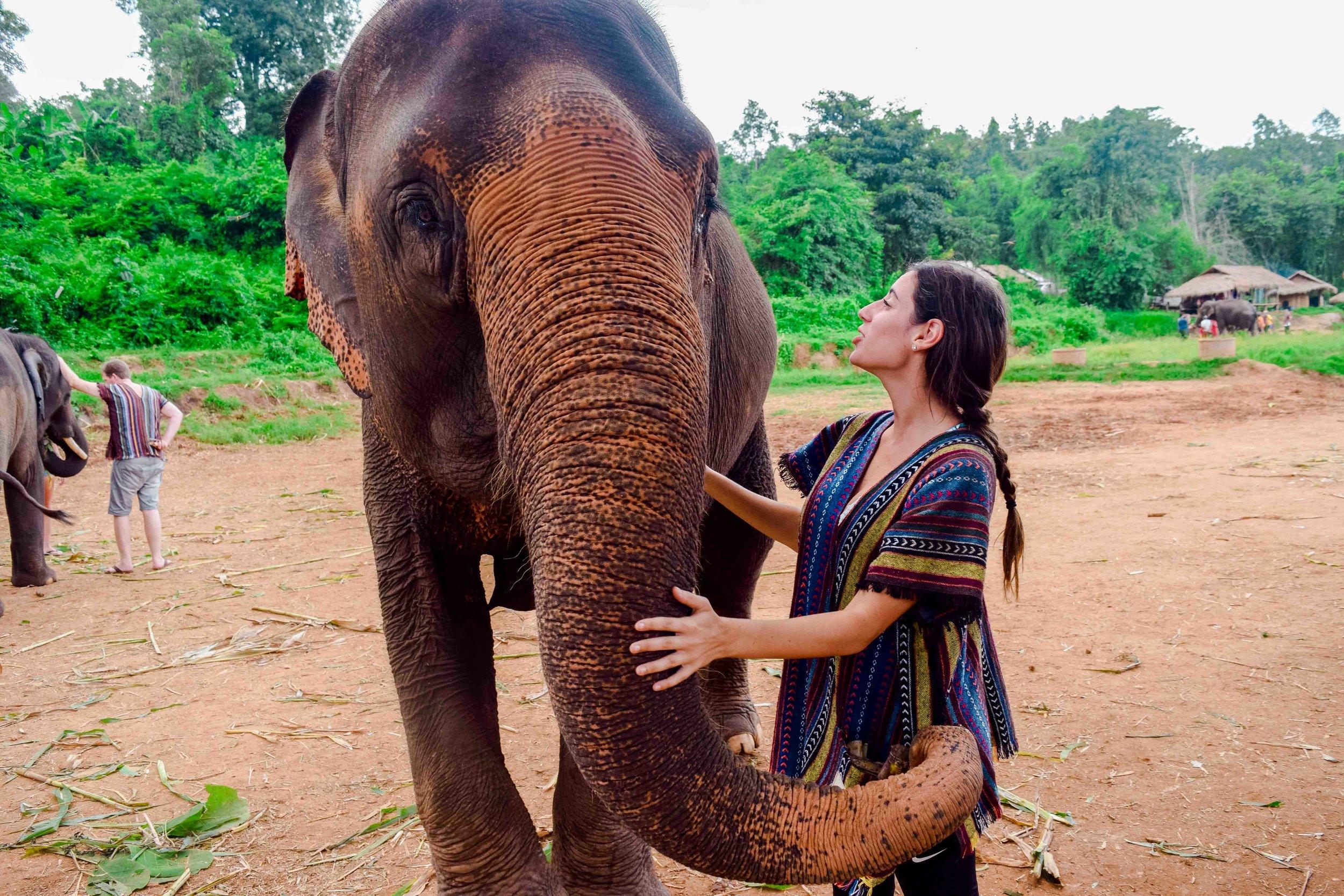 Chiang-Mai-Elephant-Tour-26.jpg