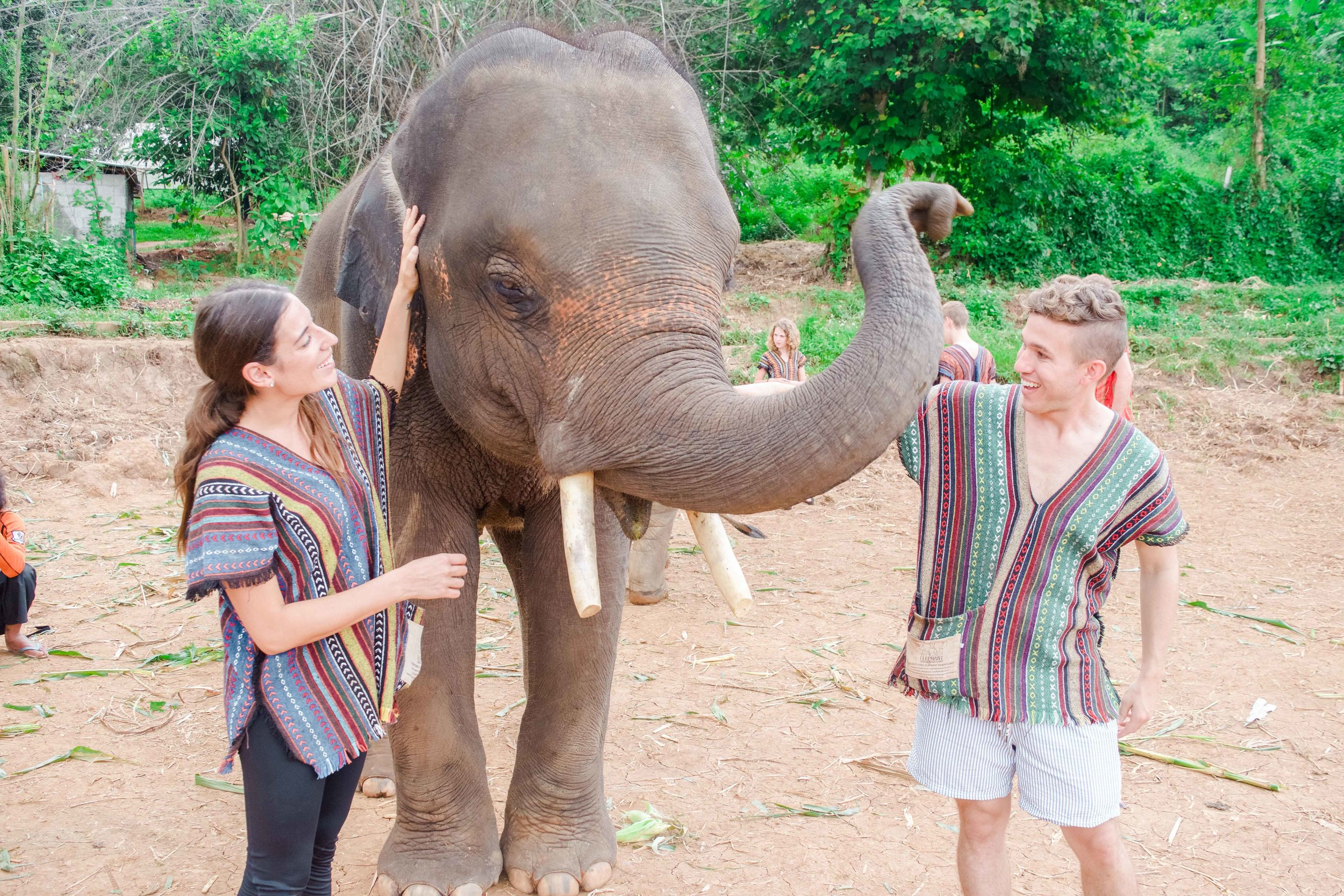 Ending the day at Elephant Nature park in Chiang Mai