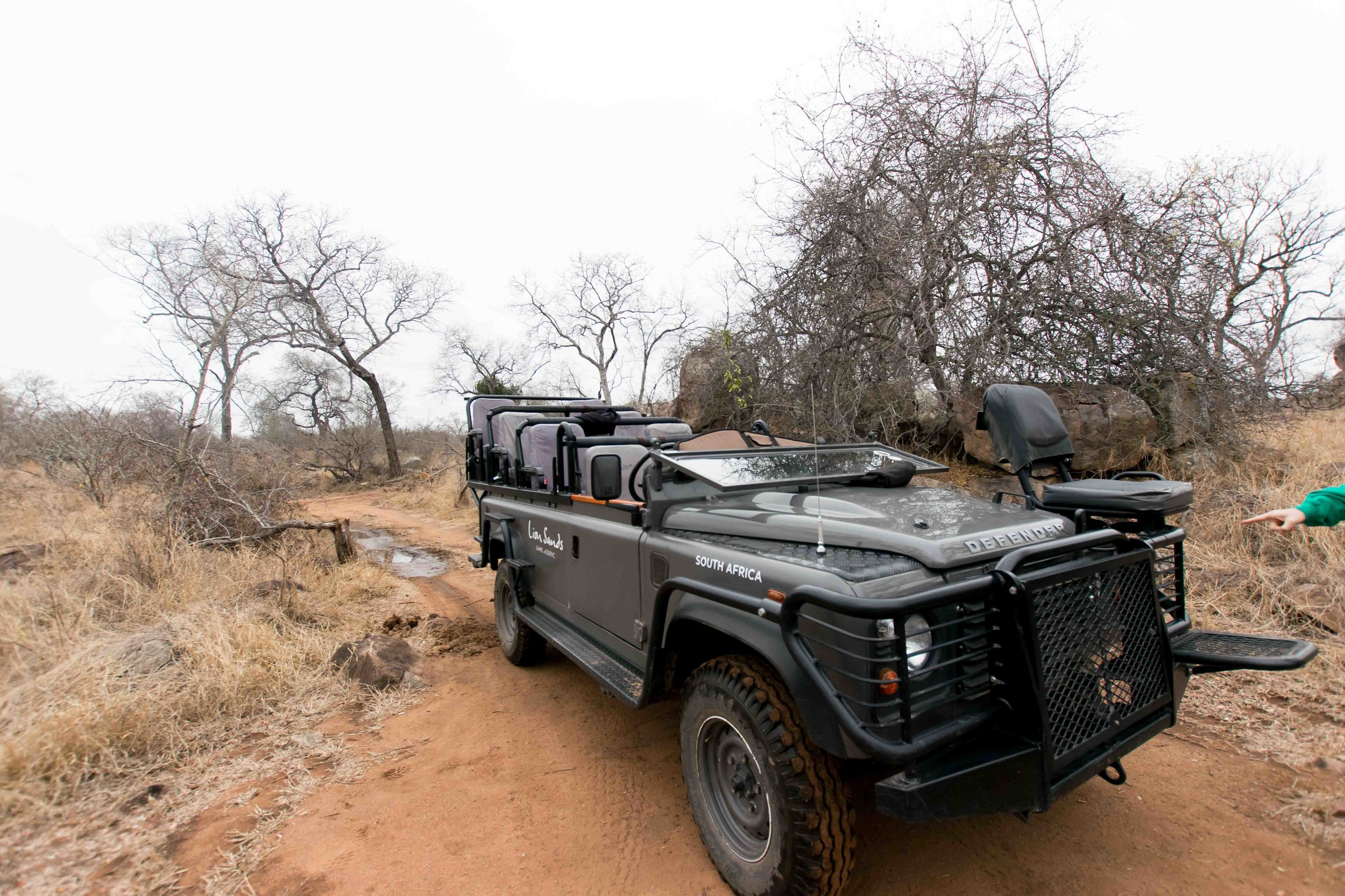 What are game drives like at Lion Sands Ivory Lodge