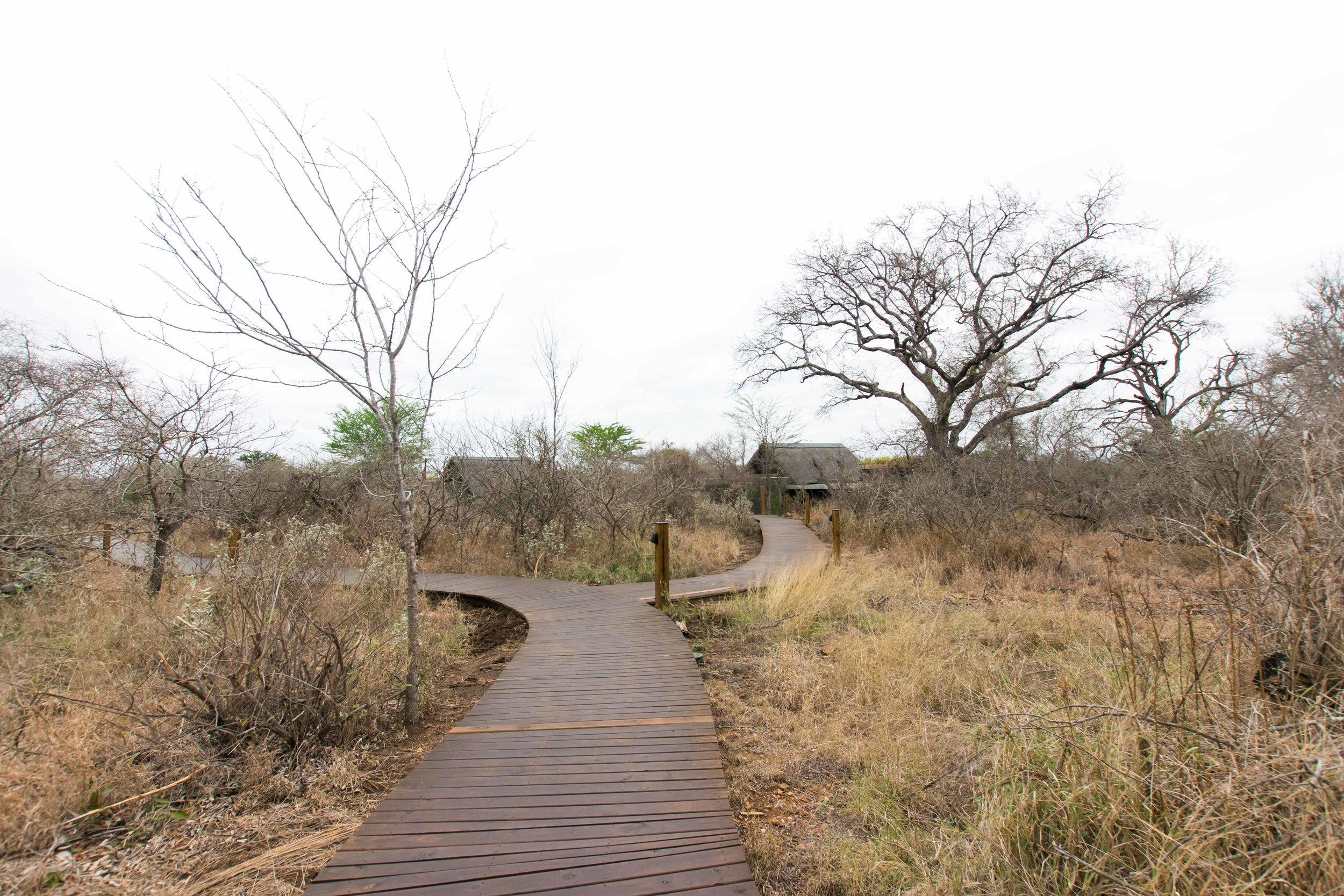 Walkways to villas at Lion Sands Ivory Lodge