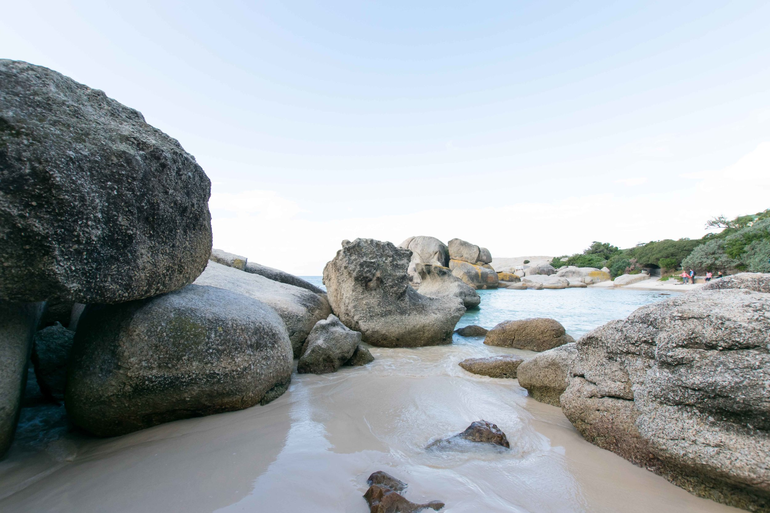 Boulder beach is the best place in South Africa (near Cape Town) to see the penguins.