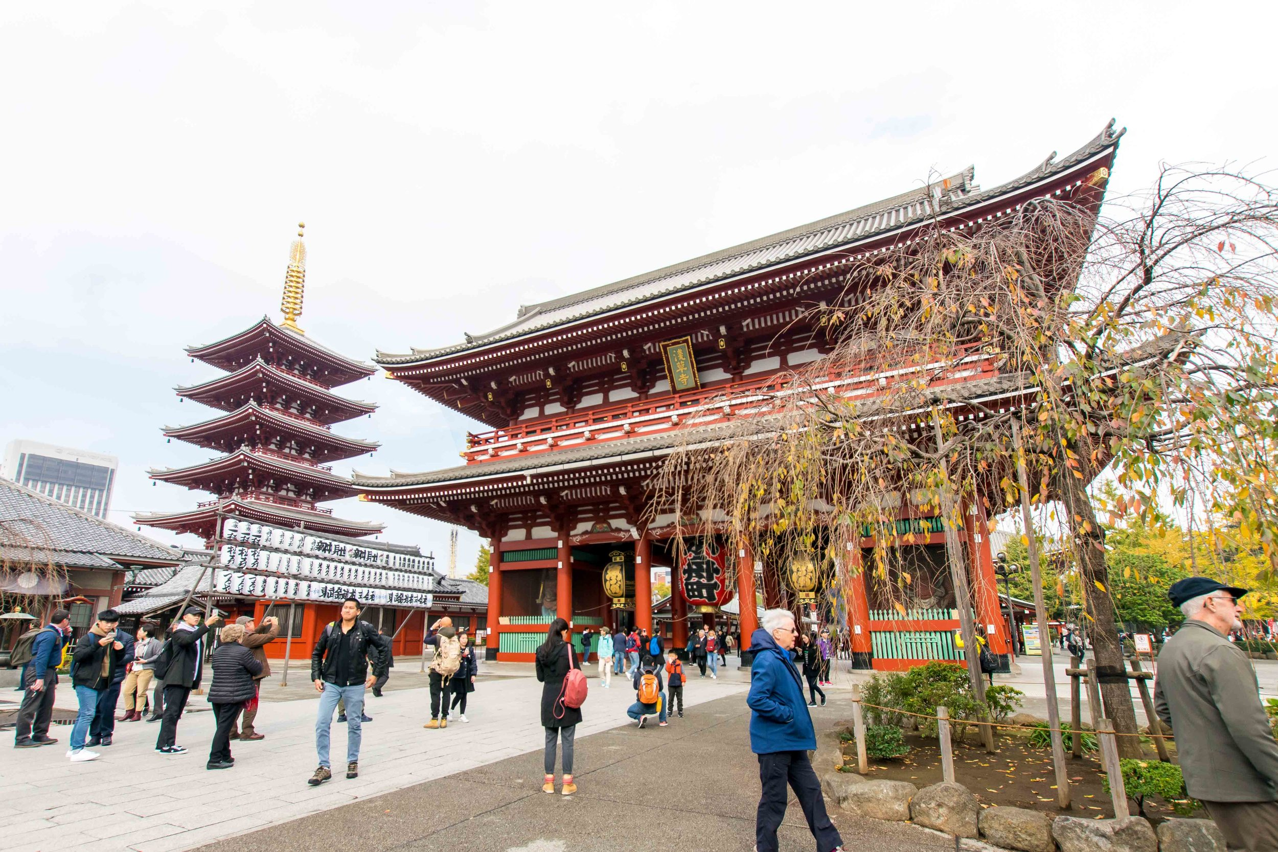 One of the best things to do in Tokyo is visit Senso-ji