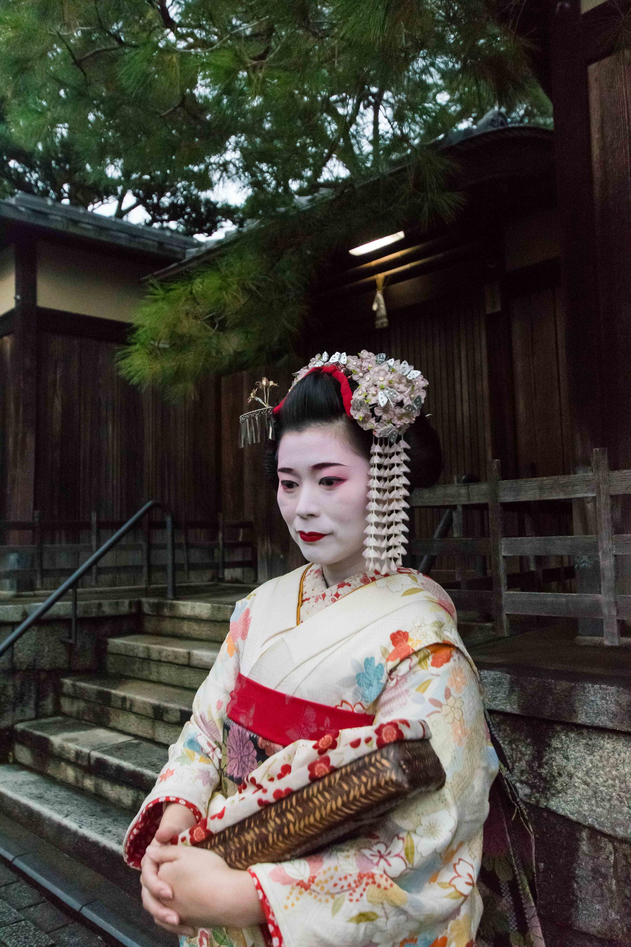 Geisha Spotting