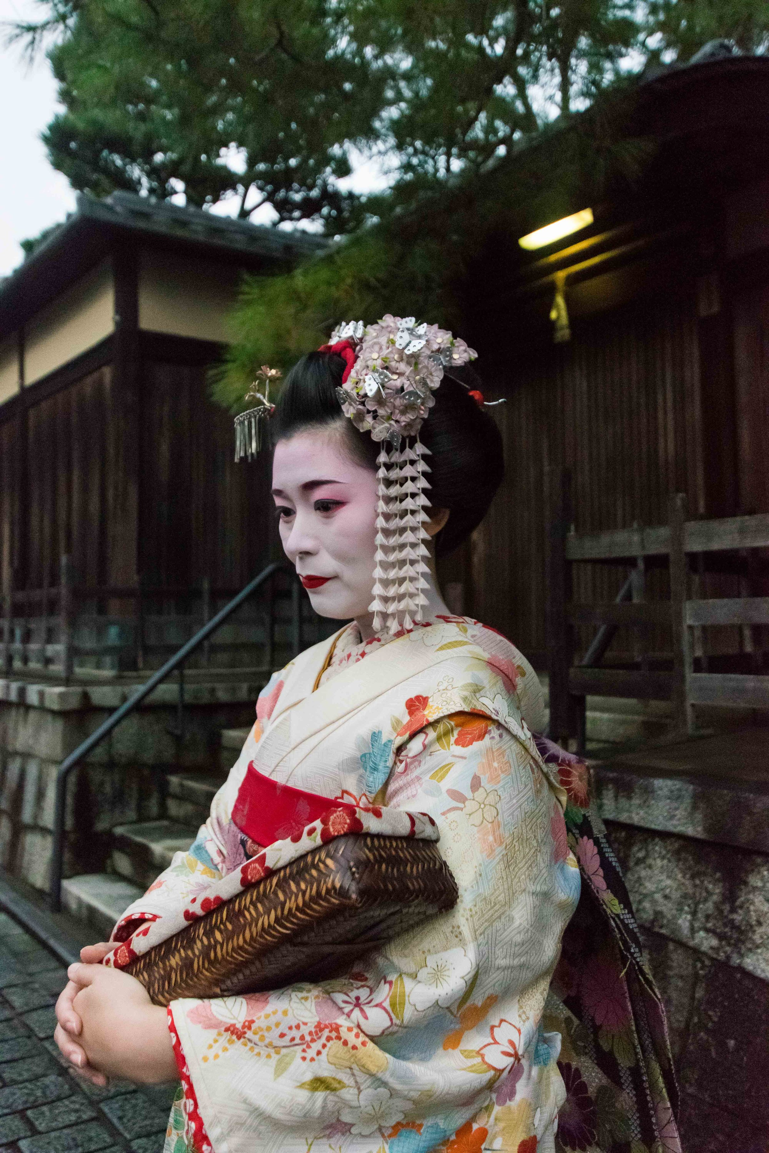 One of the top things you can not miss in Kyoto is seeing a Geisha