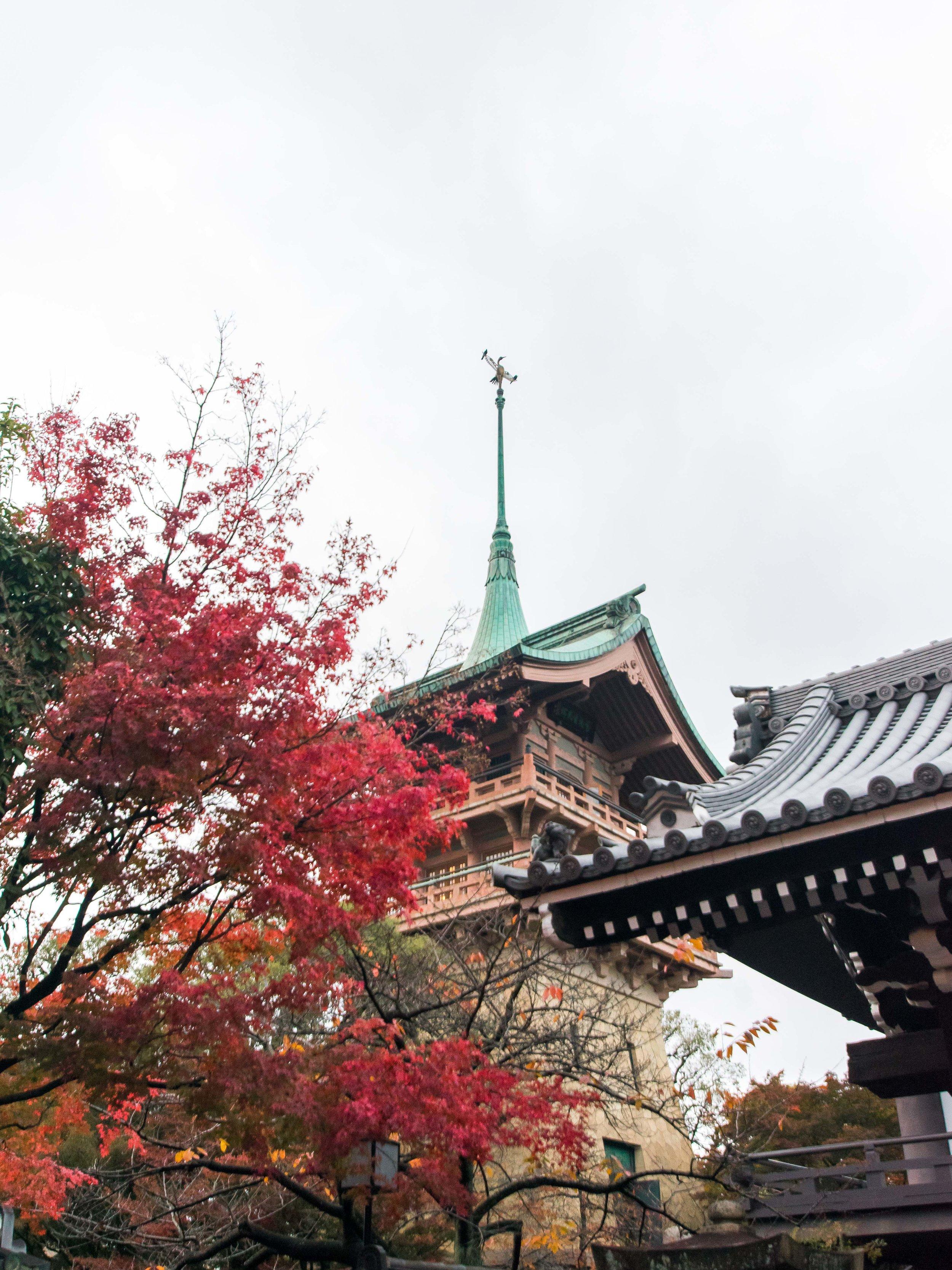 Kyoto-gion-5.jpg