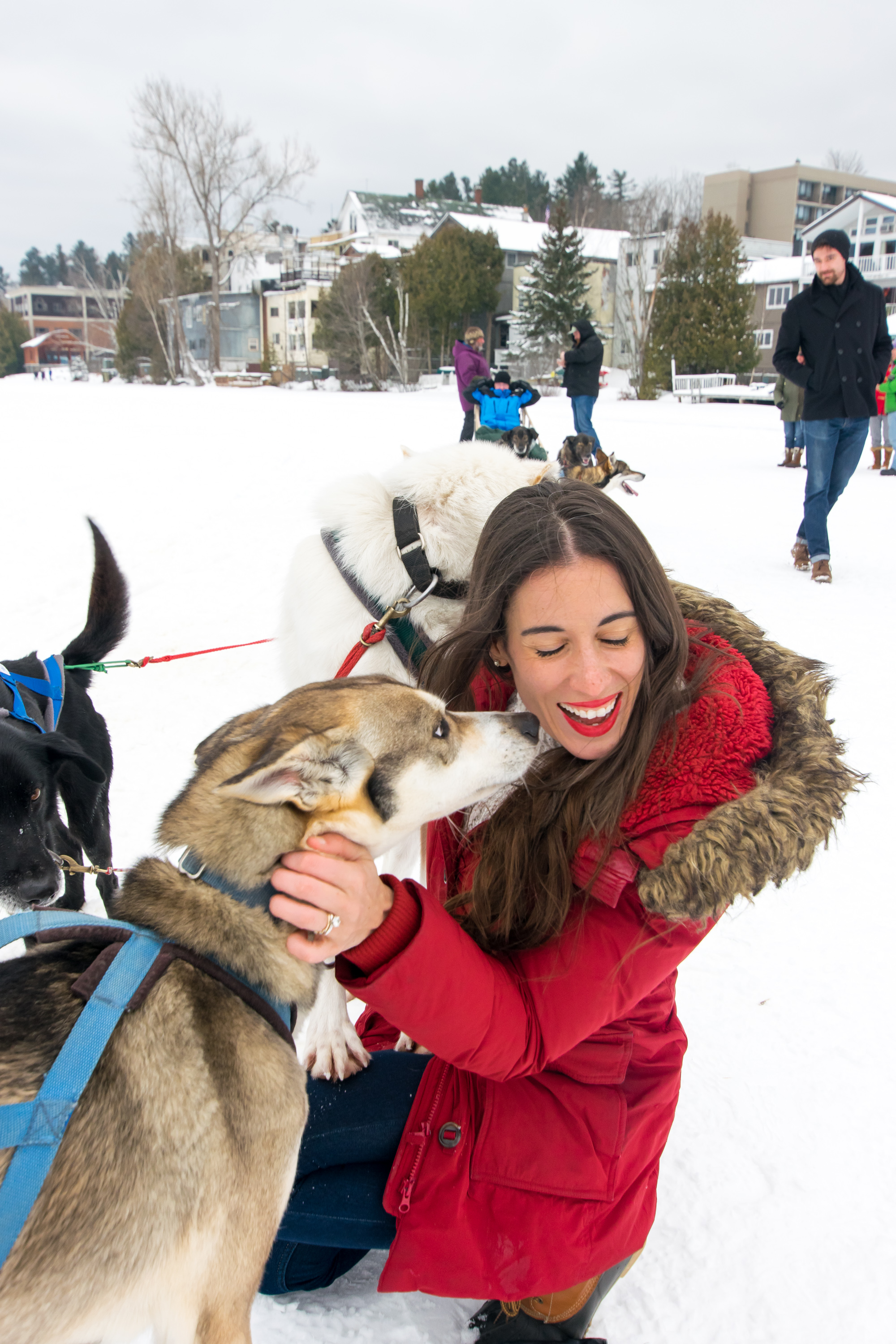 Visit the sled dogs on the lake (and take a ride)