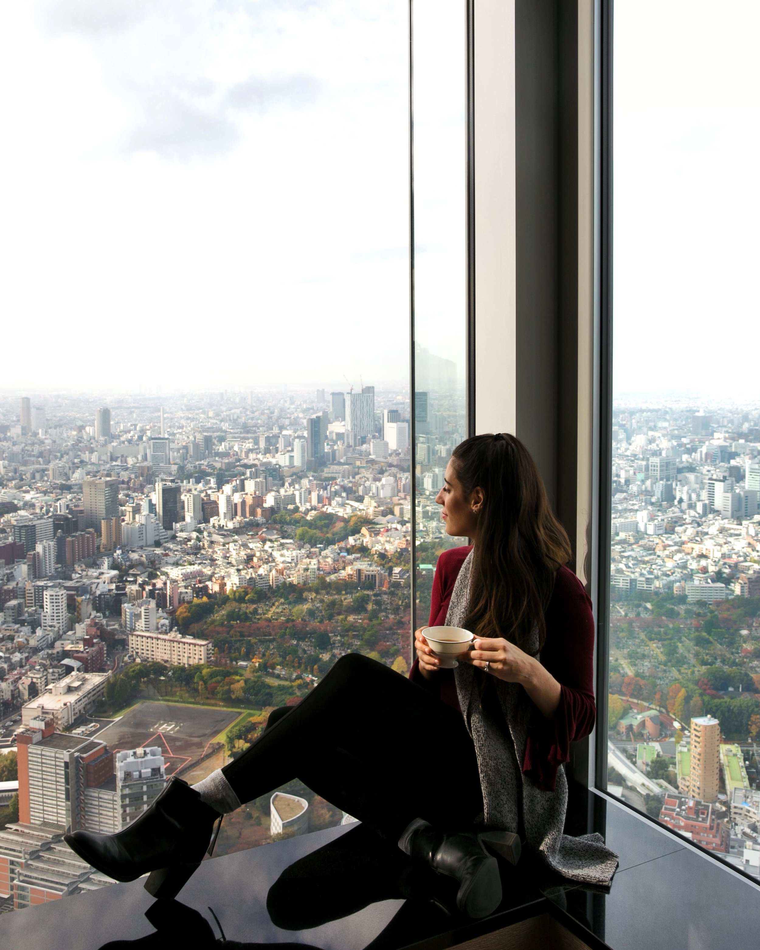 View from the top of the Ritz Carlton | Tokyo, Japan