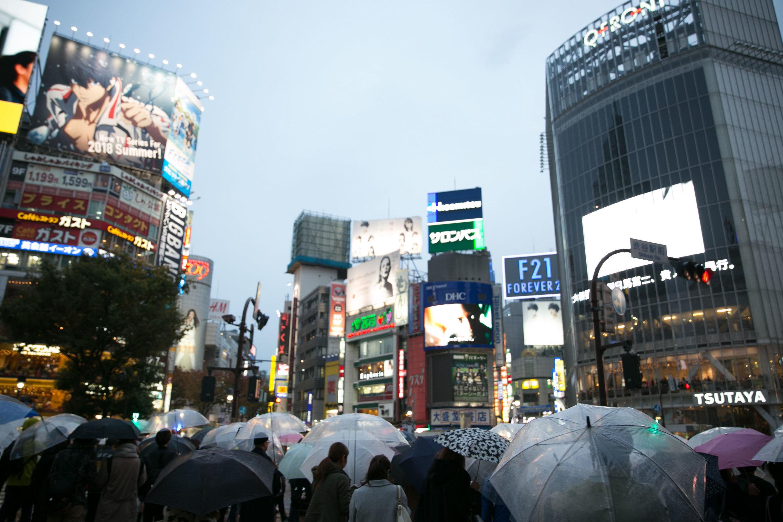 Shibuya Crossing at Street Level   Tokyo, Japan