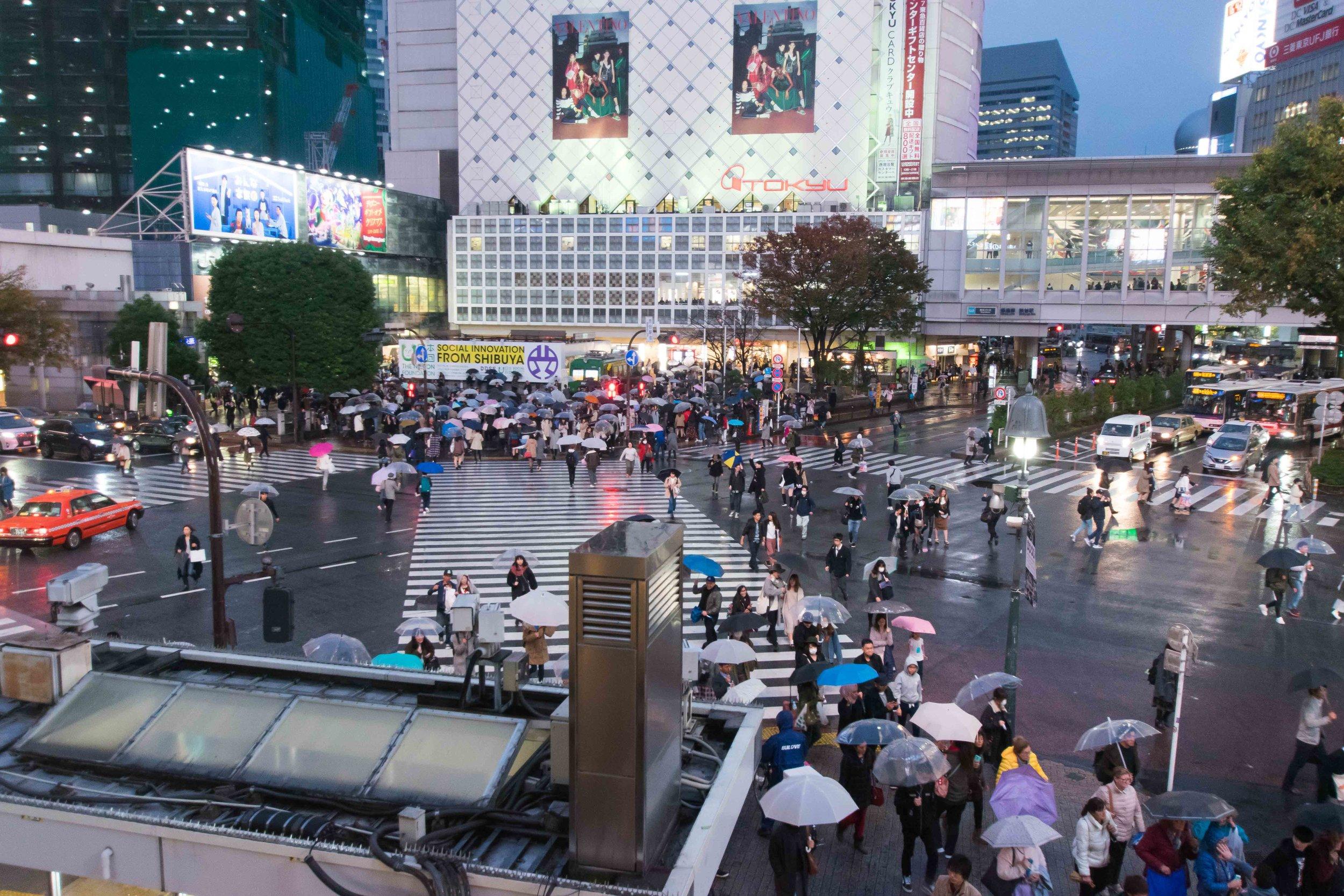 Shibuya Crossing from Starbucks   Tokyo, Japan