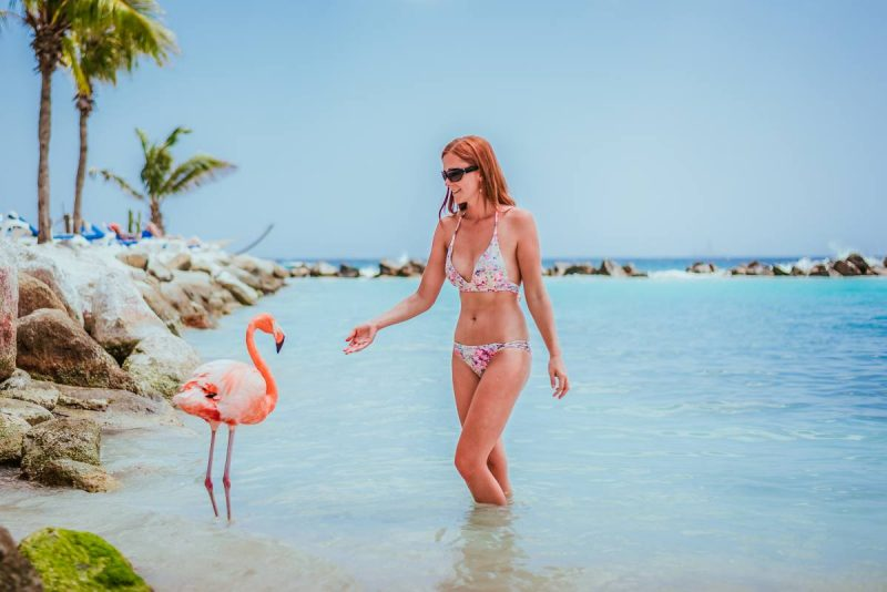Flamingos in Aruba | Photo by   Anna Everywhere