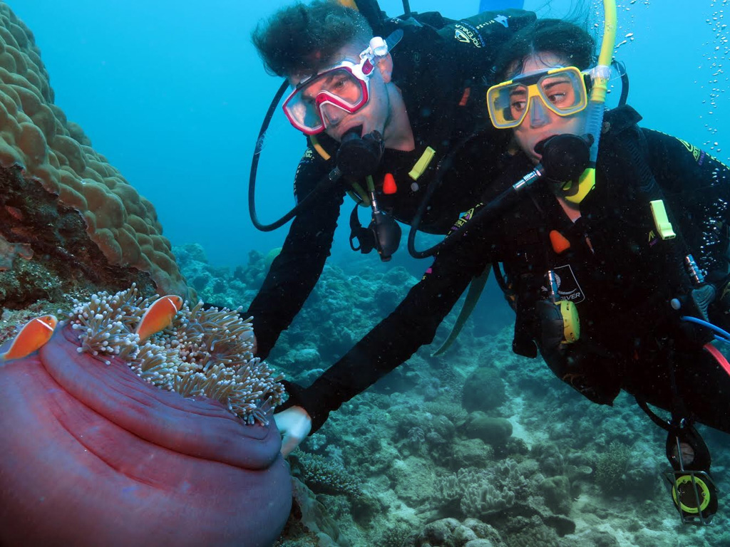 Diving the Great Barrier Reef is a once in a lifetime experience that should be on everyone's bucket-list!