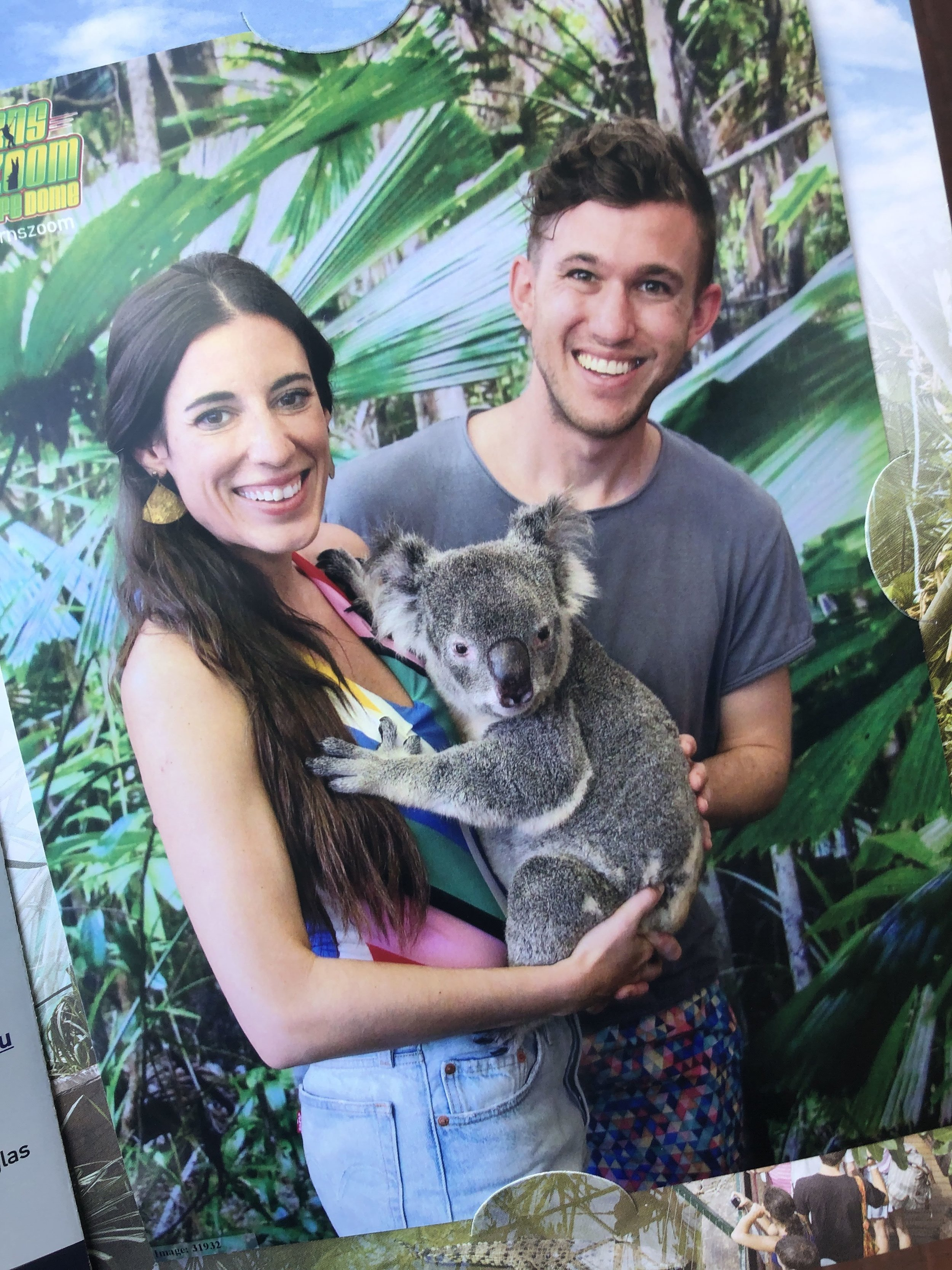 Holding a koala is seriously one of my favorite memories from Australia.