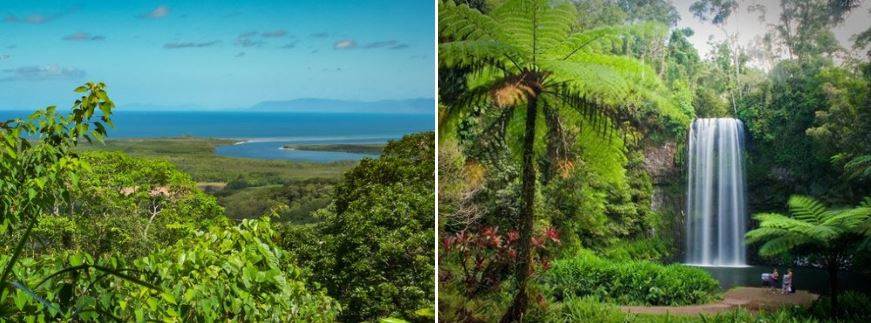 "Left: ""  Daintree National Parc Nationalpark  "", by   dronepicr  , licensed under  CC BY 2.0  Right: "" D   aintree Rainforest QLD  "", by   M&M's 3/4   ,  licensed under  CC BY 2.0"