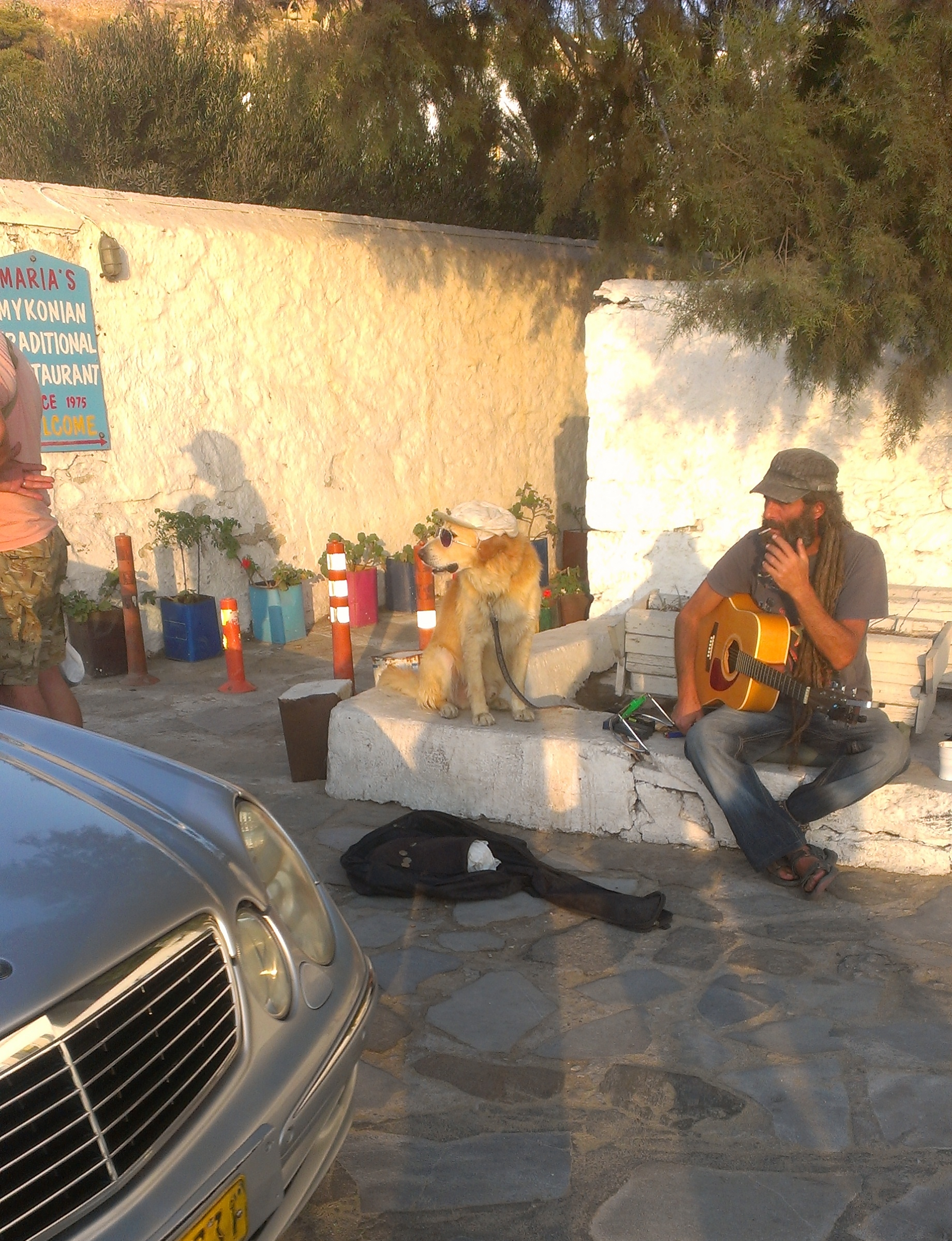 Kind of a crappy shot, but it's not every day you see a dog just chillin with a hat and sunglasses.