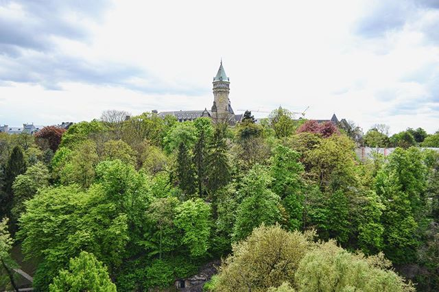 Anybody ever been to Luxembourg? 🙋‍♀️🇱🇺 I'd forgotten how beautiful it was 🌲🏰🌲 •• •• •• •• #luxembourg #luxembourgcity🇱🇺 #traveladdict #travelergirl #travelpic #travelawesome #inspiration #wanderlust #wander #lovetotravel #adventure #travelphotography #travelinspiration #travel #traveling #vacation #instatravel #instago #holiday #instatraveling #travelgram #seetheworld
