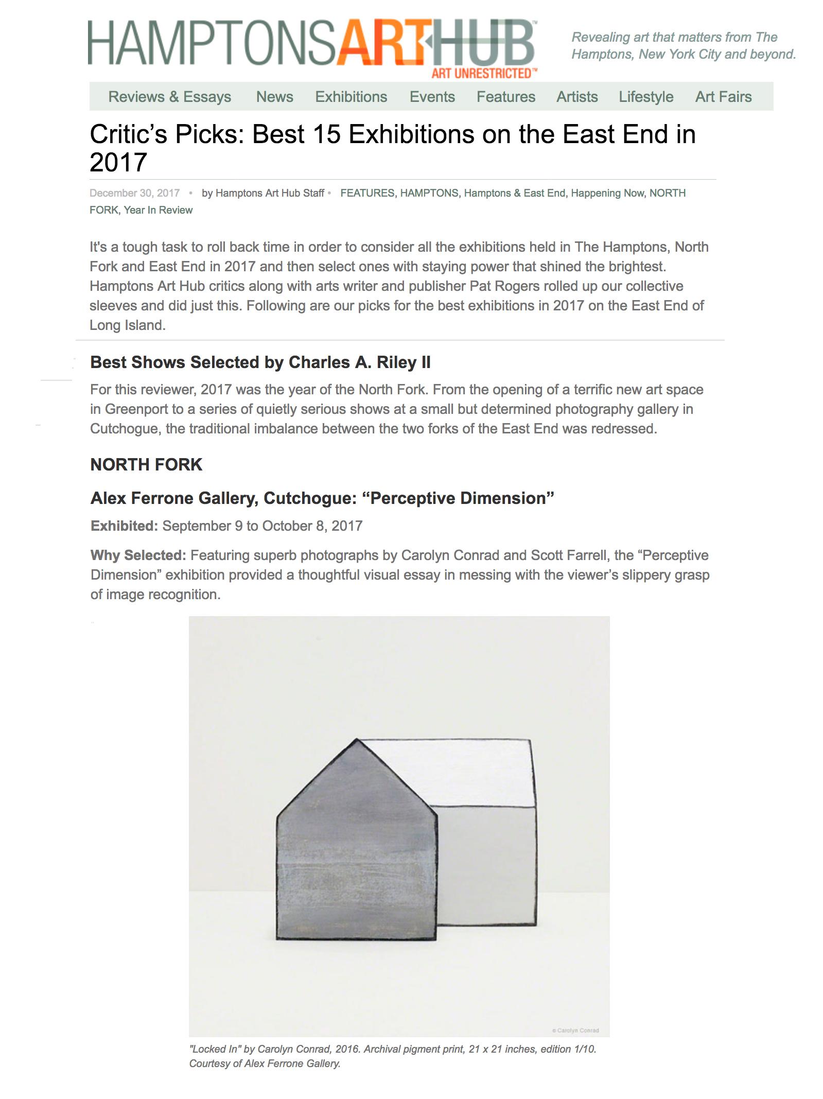 HamptonsArtHub Critics Pick 2017.jpg