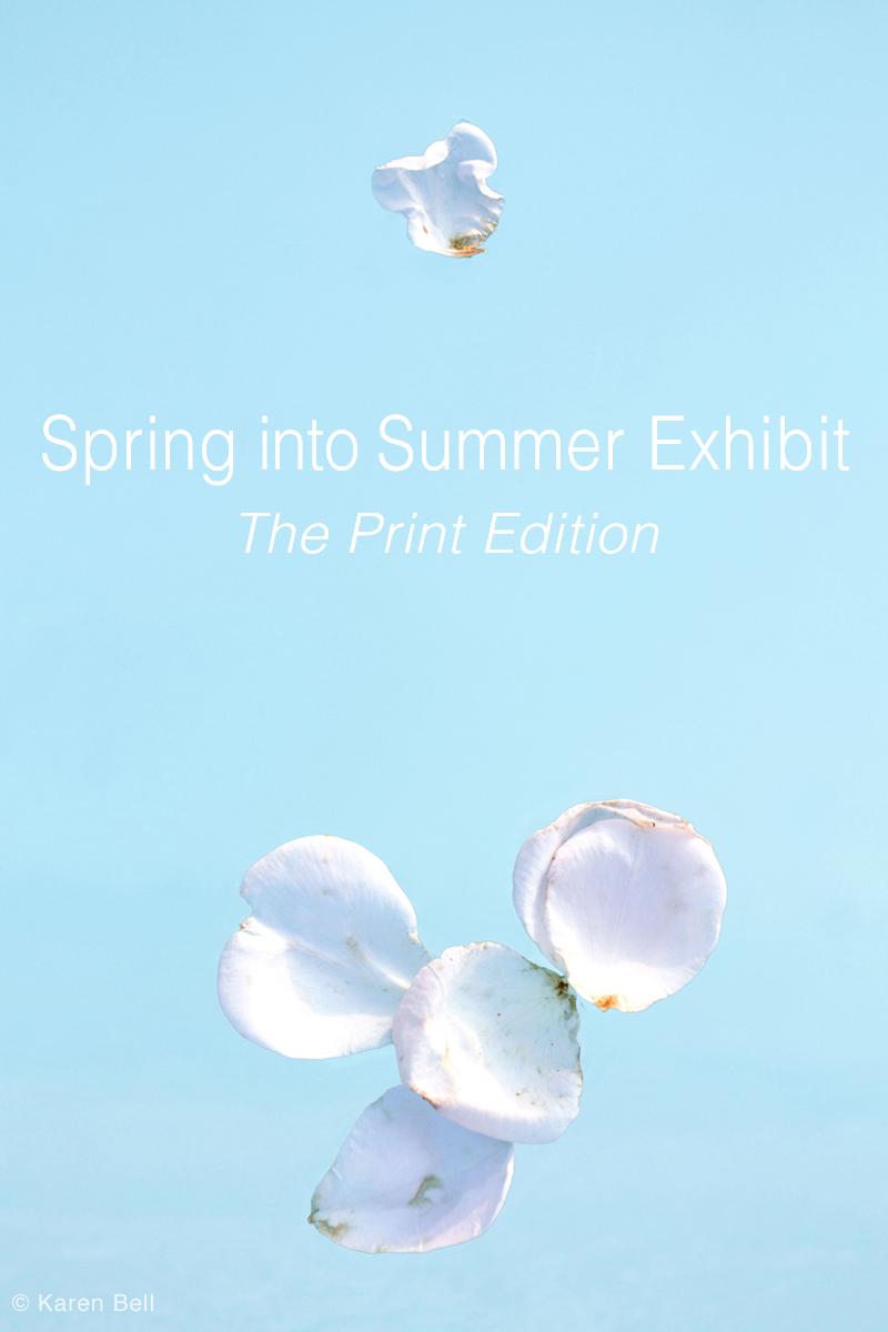 Web image Spring into Summer.jpg