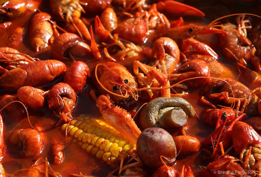 Crawfish Boil by Brandie Ferguson