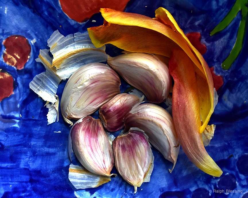 Garlic With Tulip Petals by Ralph Blessing