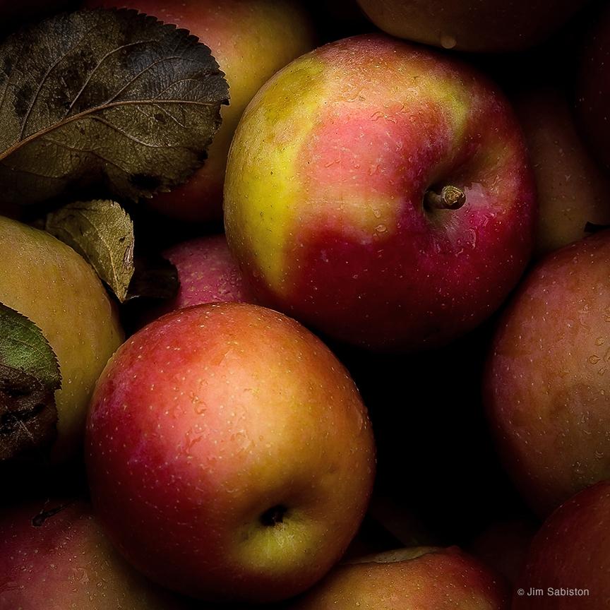 Autumn's Gift by Jim Sabiston