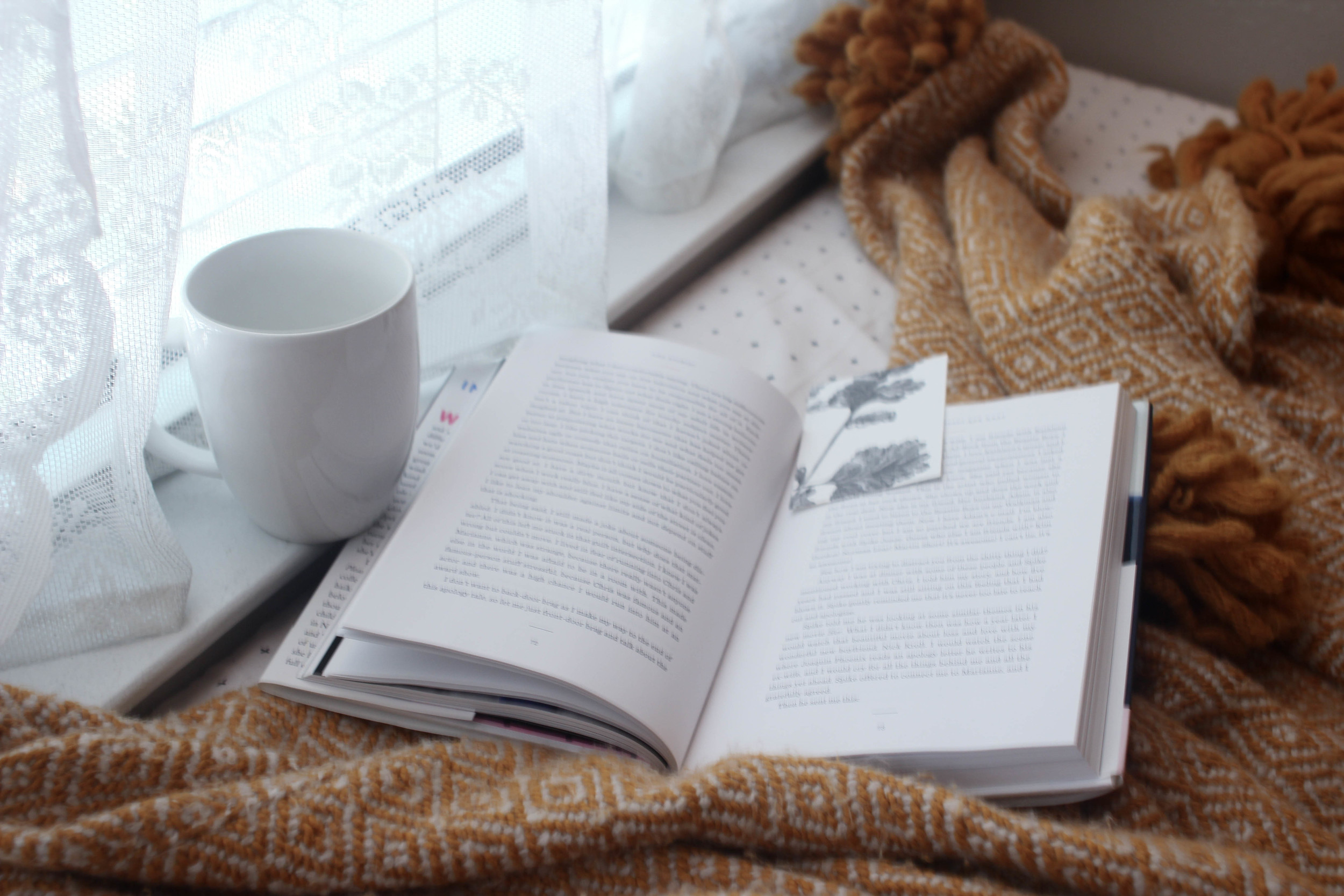 Cozy Window Nook |All the Delights