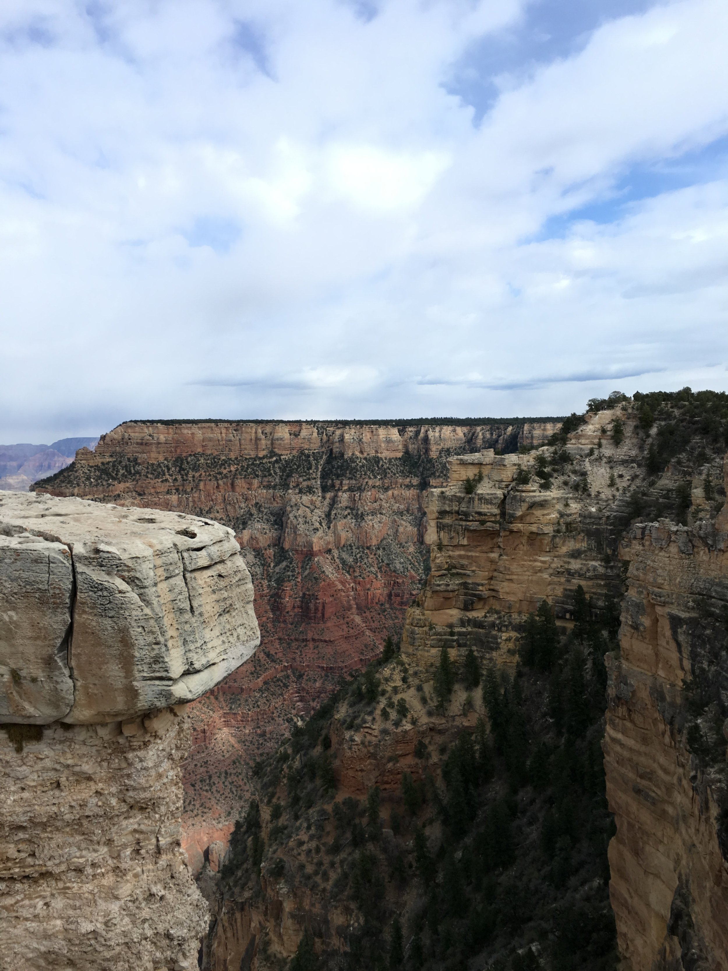 My first time seeing the Grand Canyon!