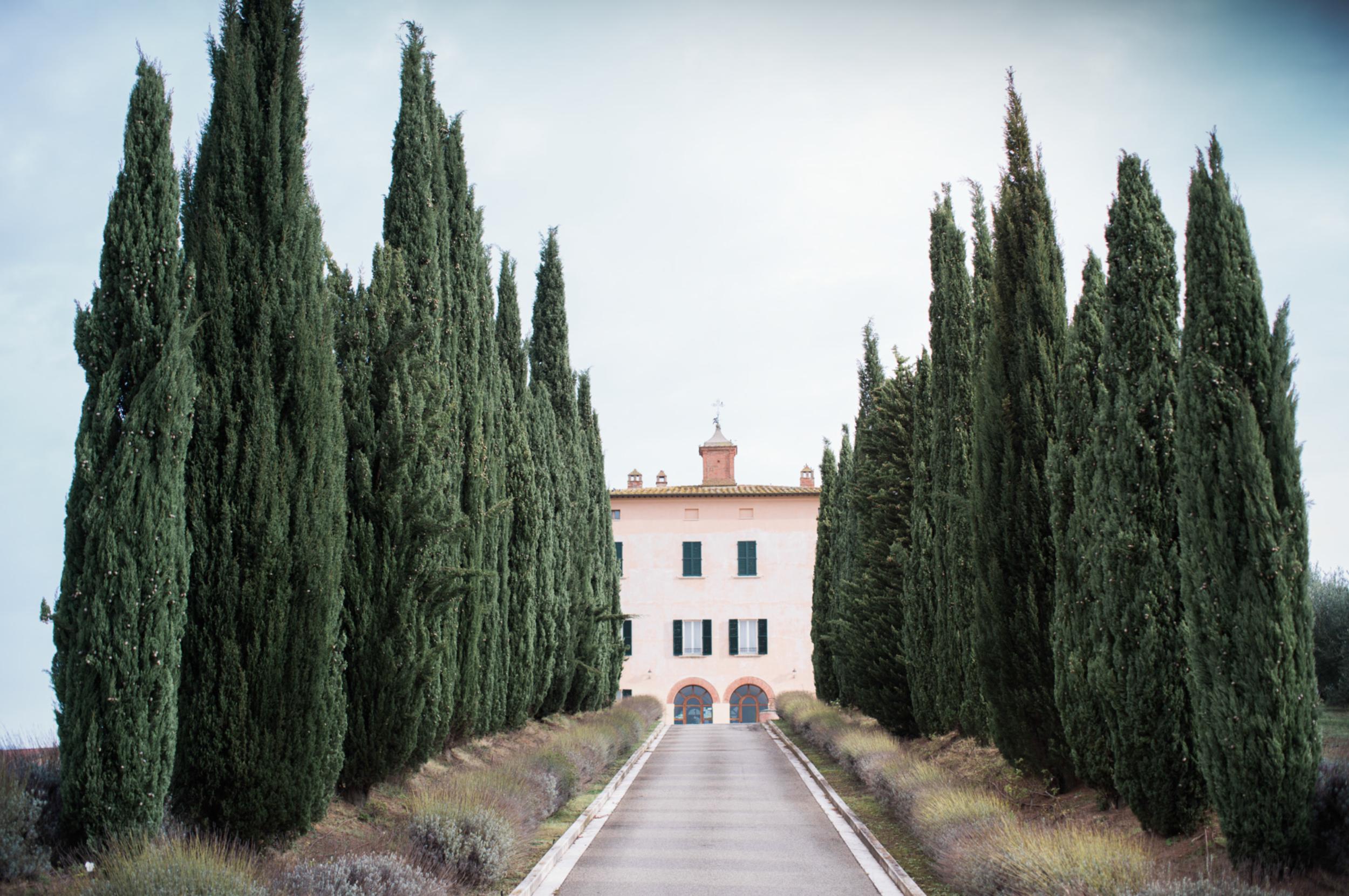 Laurenathalia_tuscany.png
