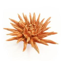 Coral Flower Orange     $20