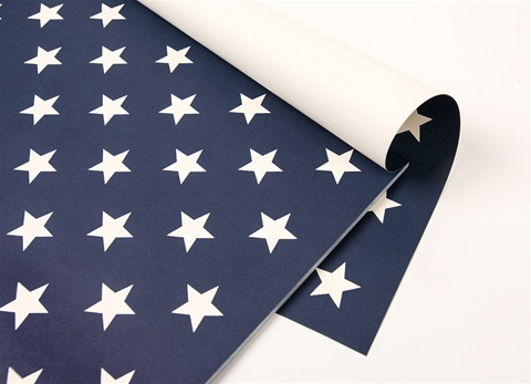 Stars on Blue Placemats $29