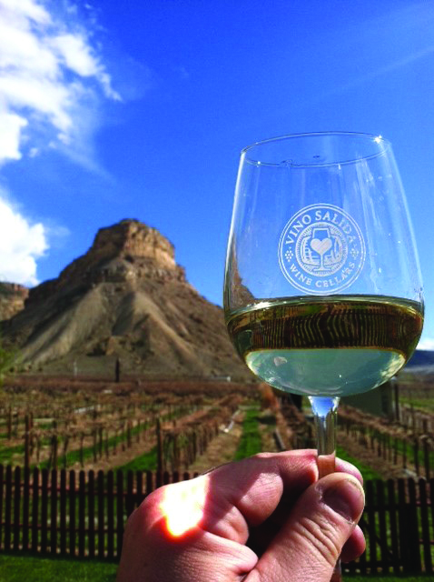 Vino Salida sources the grapes for their wine from the Western Slope near Palisade.