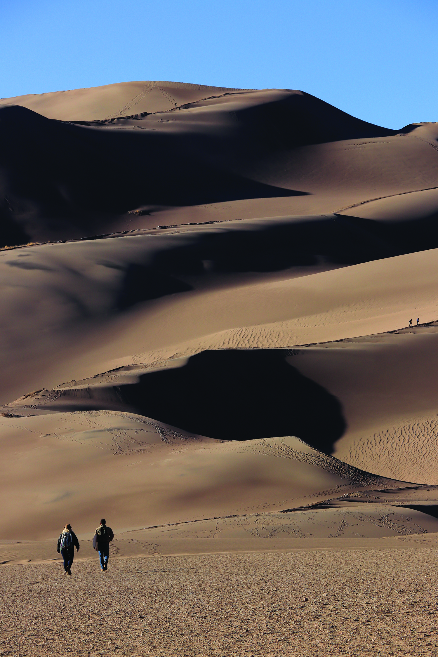 Great Sand Dunes National Park and Preserve.  Photo: Lisa McIntyre