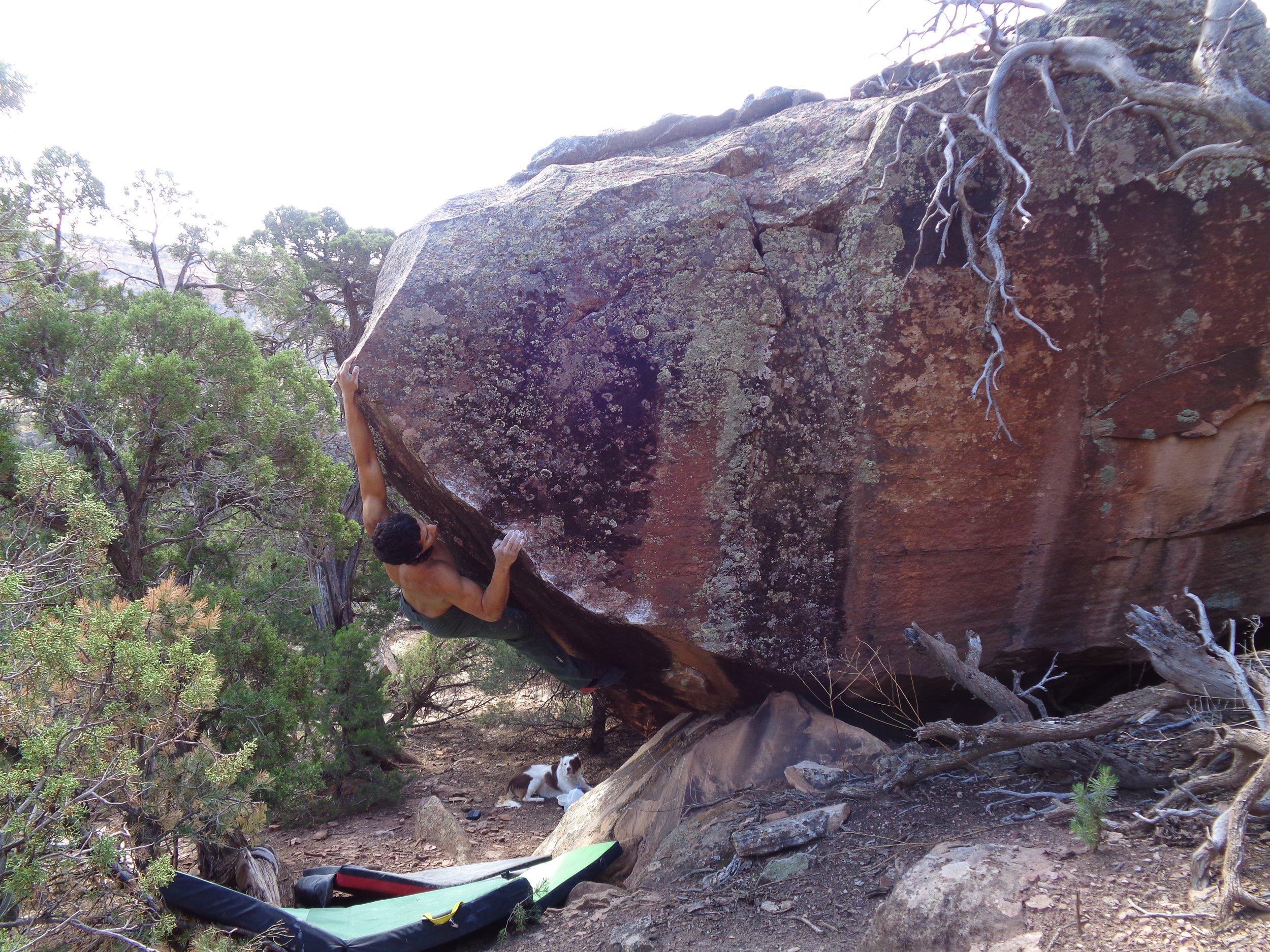 kimmel Climbing 1.jpg
