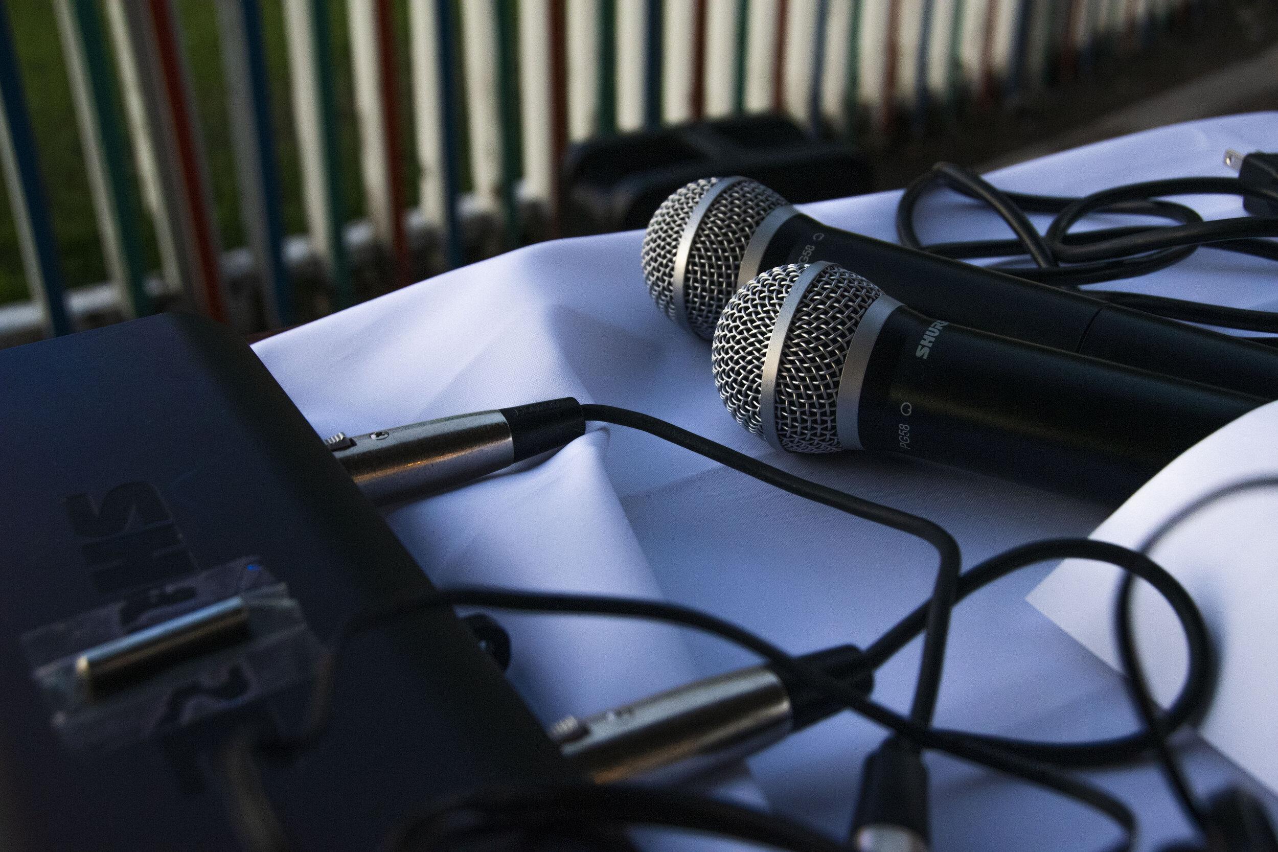 Microphones PC Natasha Lovato.jpg
