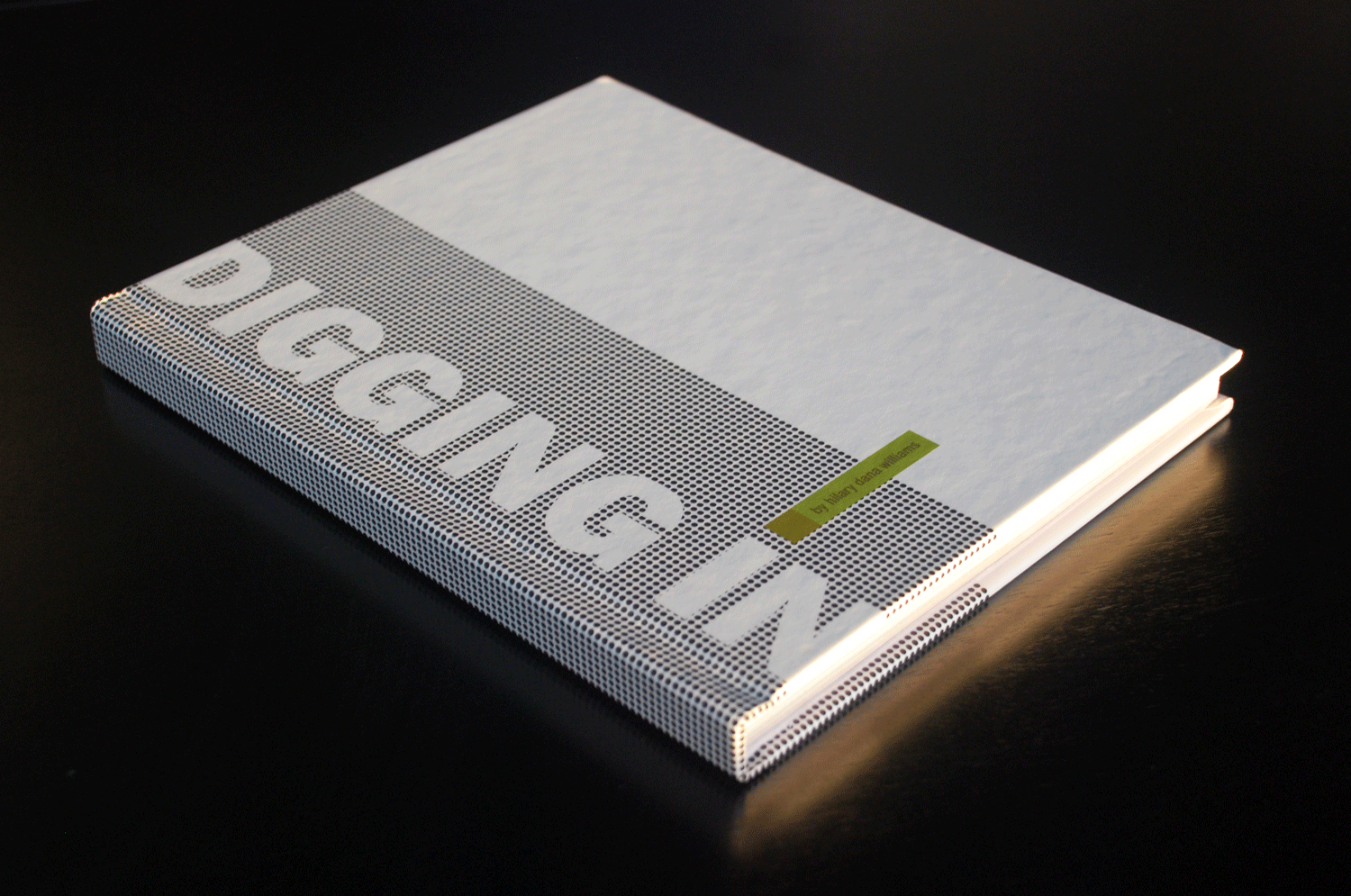 MFA thesis process book (cover)
