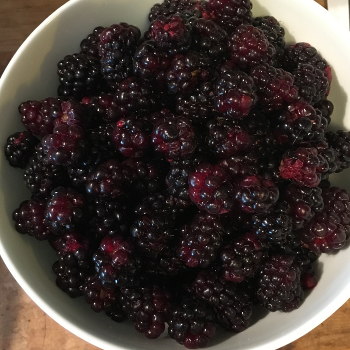 Blackberries just minutes after being picked. Be sure to remove any spiderwebs or spider legs.