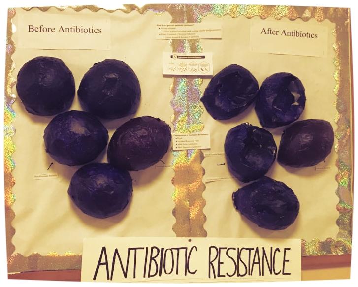 @BacteriaKills poster.jpg